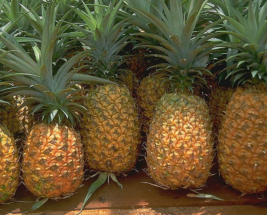 Apéritif à l'ananas
